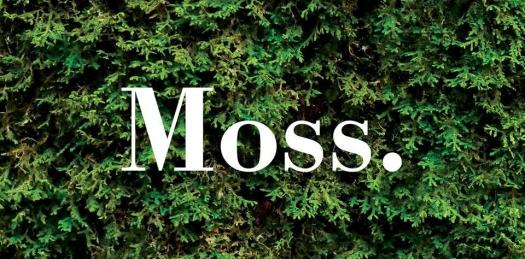 moss lit banner